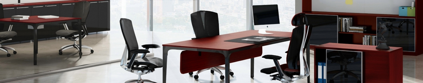 FlexiSpot Electric Height Adjustable Desks